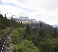 Take the train through Alaska's interior.