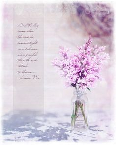 lilac photo #quote #blossom #flower #lilac