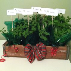 Herb gift!