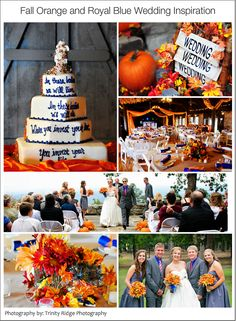 Love this Fall / Autumn wedding color scheme!  Royal blue and bright orange! :)  Inspiration board / color palette for outdoor wedding and rustic reception.