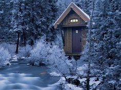 Tiny House in a winter wonderland.  A girl can dream, can't she?
