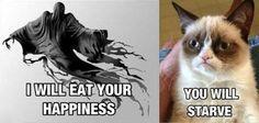 Dementors harri potter, starv, laugh, stuff, grumpi cat, funni, humor, dementor, grumpy cats
