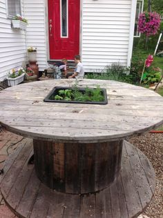 Herb Garden in a Sink Dropped into an Industrial Spool