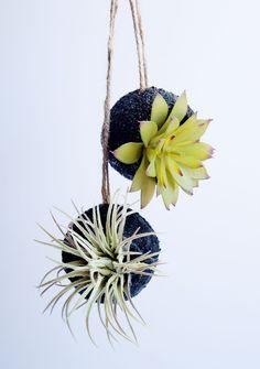 Faux succulent planters from tennis balls!