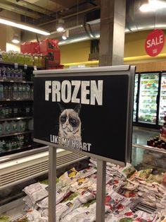 Grumpy Cat in the frozen aisle!!!