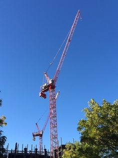 I love when people send me crane pictures. HOT!