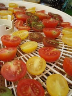 Raw Food Dehydrators: What, Why, and How To Dehydrate Snacks