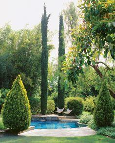 butterfli, secret gardens, seren pool