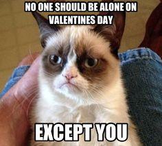 That's so mean (but still makes me laugh!!)