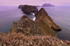 anacapa island, channel islands national park.