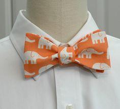 orang, bow ties, men's bow tie
