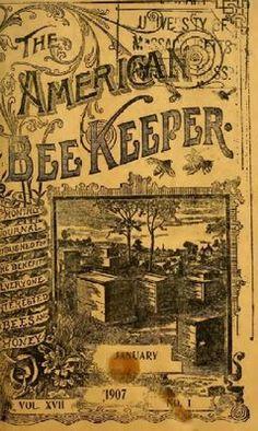 American Beekeeper 1907 american beekeep, beauti graphic, beekeep 1907, bee keeper