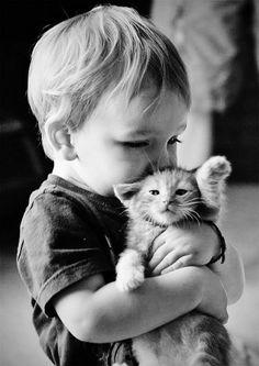 Little boy hugging a kitten.  By Your Guide