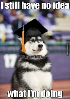 The thoughts of every graduate