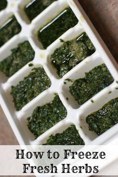 How to Freeze Fresh Herbs | 5DollarDinners.com