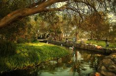 Areen Park -  Bahrain