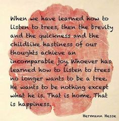 When we have learned how to listen to trees | Anonymous ART of Revolution