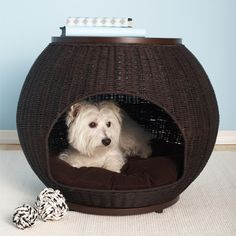 End table pet bed.