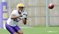 Photo Gallery: First Football Practice - Morning Session - LSUsports.net - The Official Web Site of LSU Tigers Athletics