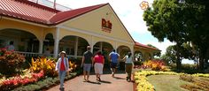 DOLE PINEAPPLE PLANTATION (Oahu) — For the freshest pineapple on Oahu, the Dole Pineapple Pavilion at Dole Plantation is the place to be! Sample refreshing, unique pineapple treats, shop for exclusive gifts and walk the pineapple garden to see exotic varieties of pineapple like the Red Saigon. Anything and everything pineapple you could ask for, Dole's got it! Pineapple Ice Cream!!