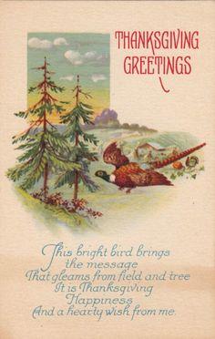 Thanksgiving card...