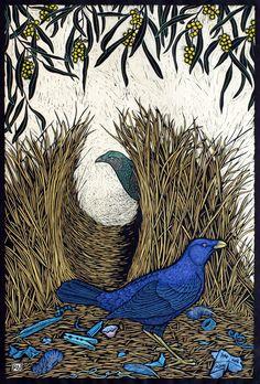 Satin Bower Bird - Hand coloured linocut on handmade Japanese paper by Rachel Newling