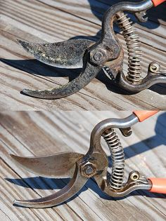 Clean and sharpen ANY pruning shears in 10 minutes or less!
