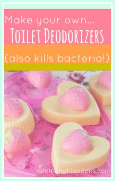 Make Your Own Toilet Deodorizers (also kills bacteria)