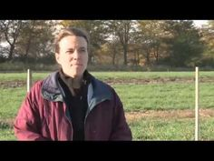 Biochar and Prairie Biodiversity - YouTube video with Laurie Biederman of Iowa State University on using 1% and 3% biochar amendments to plantings in prairie soils.  Second year of test shows increased biodiversity.