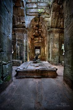 Amongst the ruins of Ta Phrom, part of the Angkor Wat complex near Siem Reap, Cambodia.