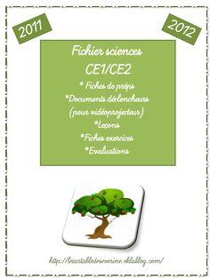 Fichier sciences (CP)/CE1/CE2