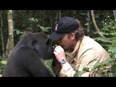 Animal and Human Love is Eternal