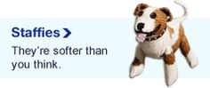 """""""Staffies, they're softer than you think"""" campaign by Battersea Dogs & Cats home includes a knitting pattern!"""