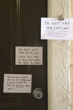 don't let the cat out....