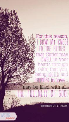 Ephesians 3:14 17&19
