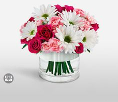 Mixed,Pink,Red,White,Carnation,Daisy,Mixed Flower,Rose,Teddy,Arrangement