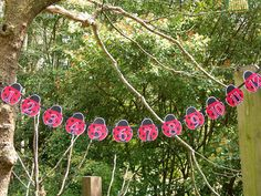 The First Year Ladybug Photo Banner READY TO SHIP by paperpeddler, $22.00
