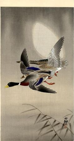 Mallards and Moon by Ohara Koson (1877~1945)