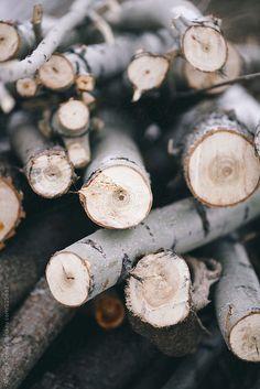 #element #earth #wood