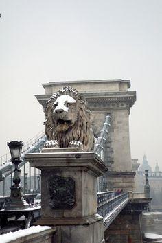 Chain Lion