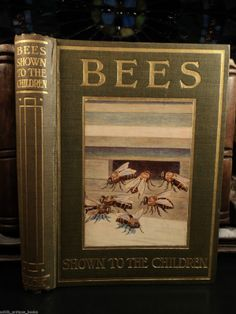 1912 Animal Science Nature Bees Shown to Children Apiary Beekeeping Illustrated