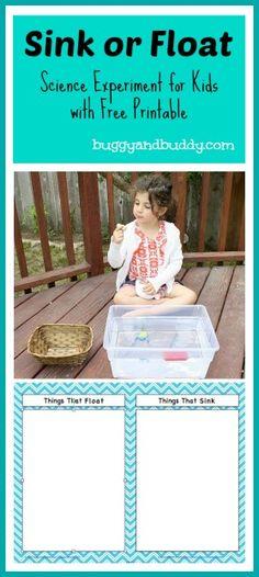 sink or float science