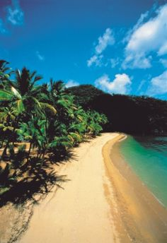 Queensland, Australia. One of the most beautiful beaches in the world.