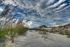 St. Joseph Peninsula State Park by steve_rob, via Flickr