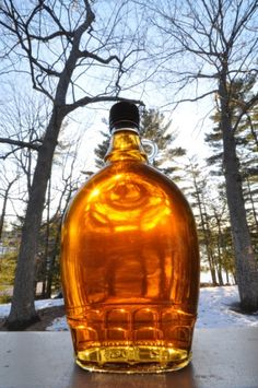 Maple syrup from tapping to bottle.