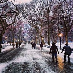 snowi central, winter, fascin place, york central, snow central park