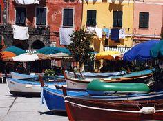 Vernazza, Italy  www.savevernazza.com  www.rebuildmonterosso.com
