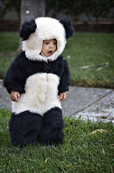 panda!.