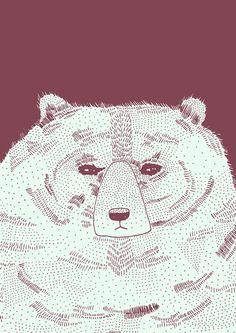 Bear illustration print