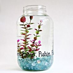 A one gallon pickle jar makes a great home for your Betta or goldfish! Decorate w/ vinyl letters for a special touch.